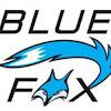 bluefoxsafety