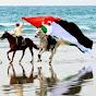UAEpatriot