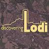 Discovering LODI