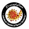 DAEPC Asociación Española de Plantas Carnívoras
