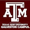 Texas A&M at Galveston