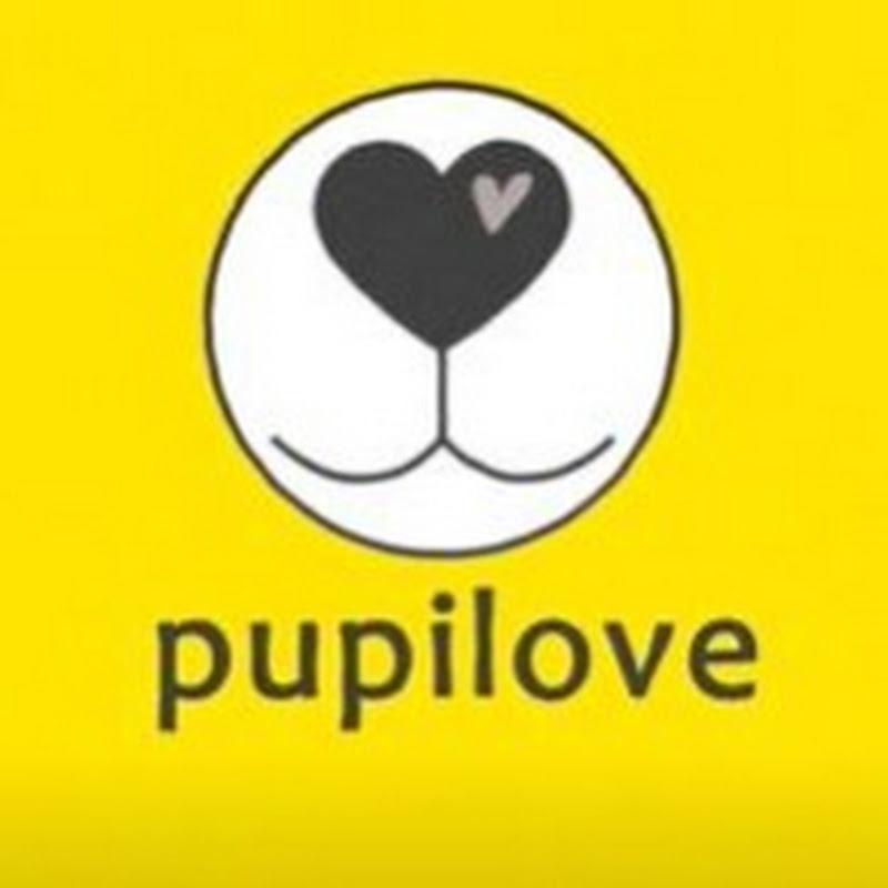 PUPILOVE