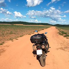 Pedro Tutors