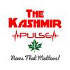The Kashmir Pulse