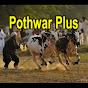 Pothwar Plus