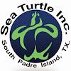 Sea Turtle Inc.