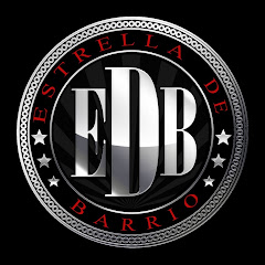 EDBvision