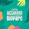 ACUARIO DE GIJÓN ASTURIAS
