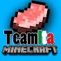 TeamITAMinecraft