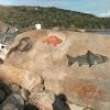 Petroglyphist