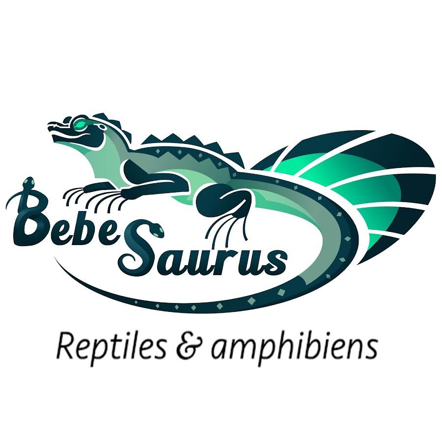 """Résultat de recherche d'images pour """"bebesaurus"""""""