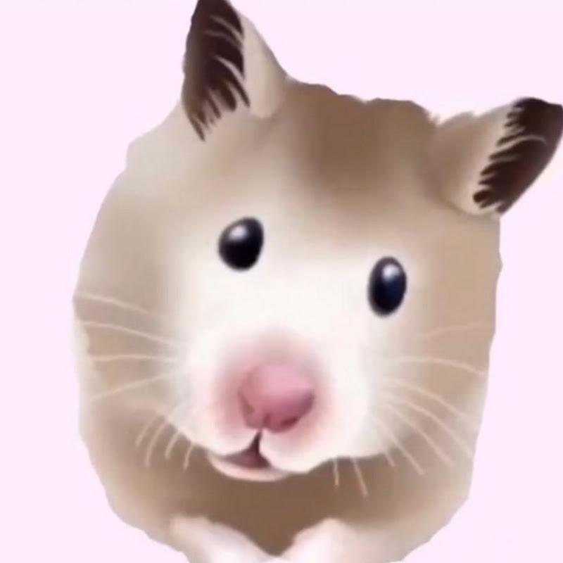 Faith's Furry Critters