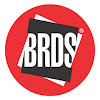 BRDS - Your Design Career Guide - NID, NIFT, NATA, CEED Coaching in Mumbai