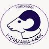 kanazawazoo317