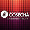 Alabanza Cosecha SF