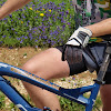 Bicicletando