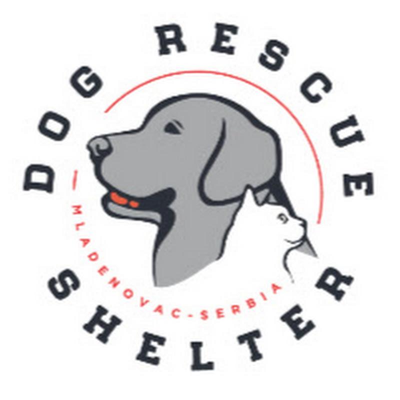 Dog Rescue Shelter Mladenovac