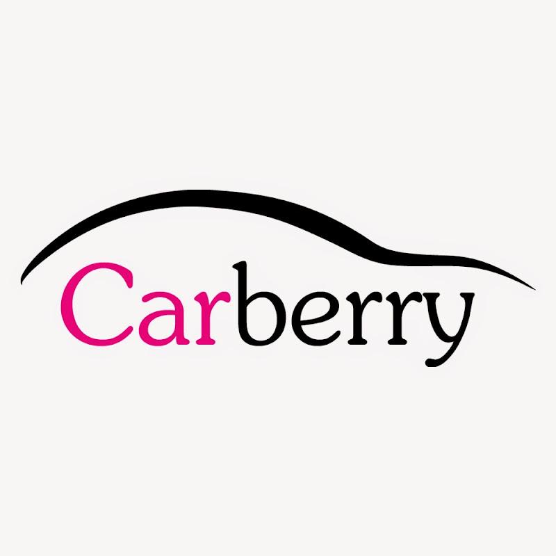 raspberry pi   carberry