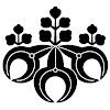 casey murakami-2