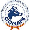 CONAFE - Frisona Española