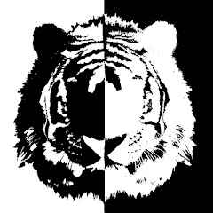 [WT]White Tiger GAME PLAY