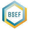 BSEF – The International Bromine Council