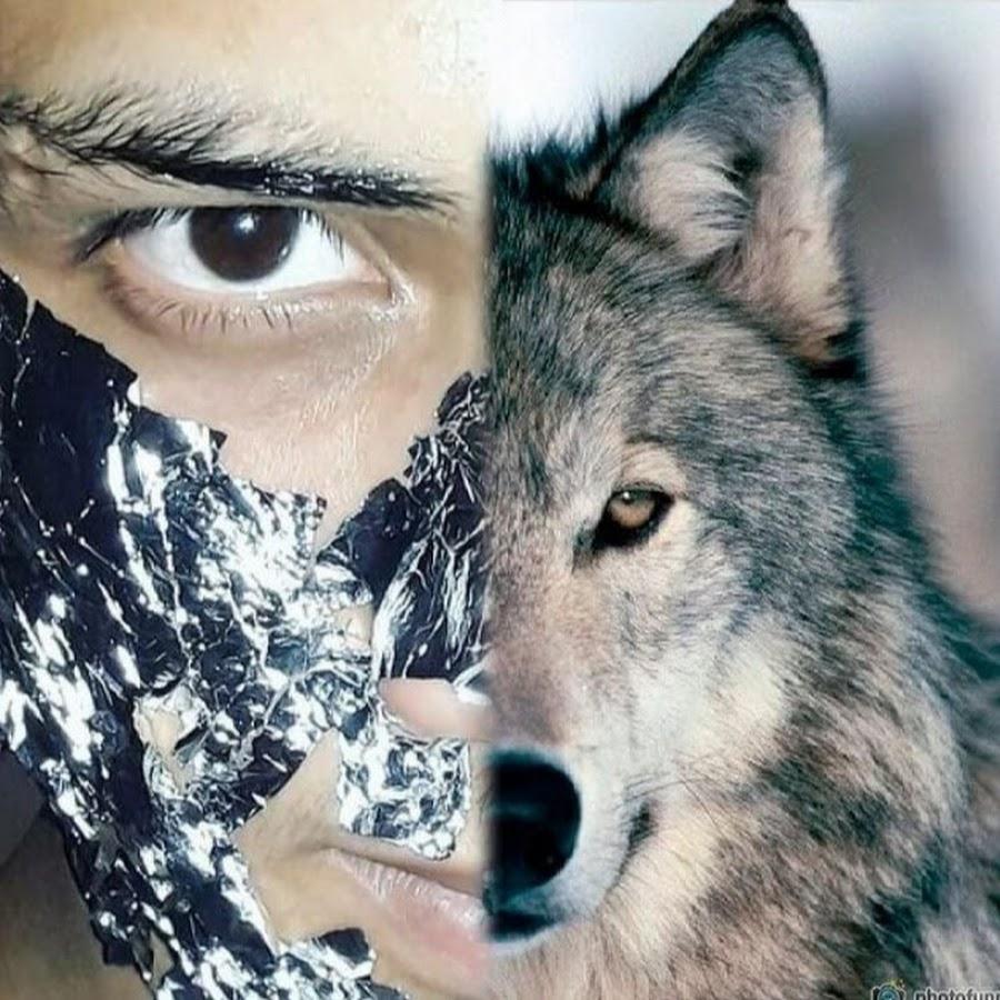 WOLF WRESTLING Club