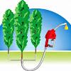 Hardwood Biofuels