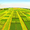 Univ of Wisconsin Integrated Pest and Crop Management