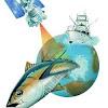 seaviewfishing