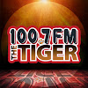 1007 The Tiger