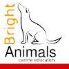 Bright Animals