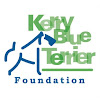 Kerry Blue Terrier Foundation