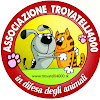 Trovatelli4000