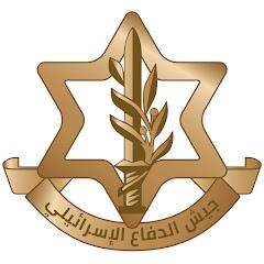 جيش الدفاع الاسرائيلي