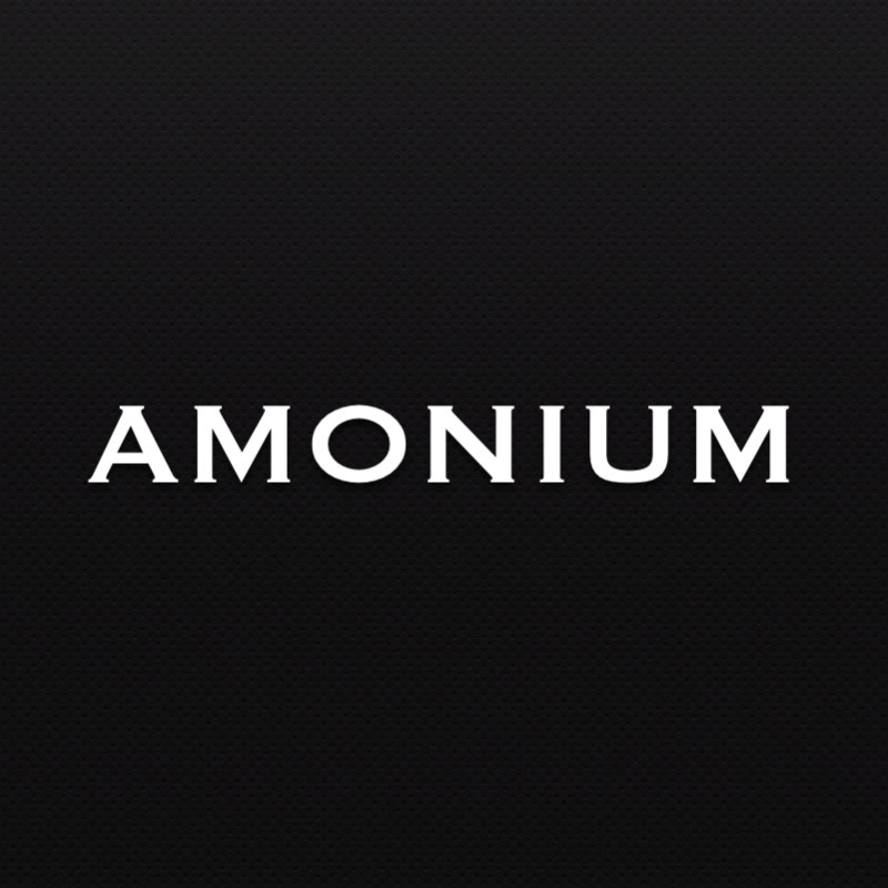 AMONIUM. Бизнес-блог студента