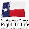 MontgomeryCoRTL
