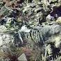 panchomataperros