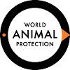 World Animal Protection Australia