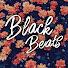Black Beats смотреть онлайн в хорошем качестве бесплатно - VIDEOOO