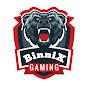 BinniX