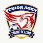 Senior Agen