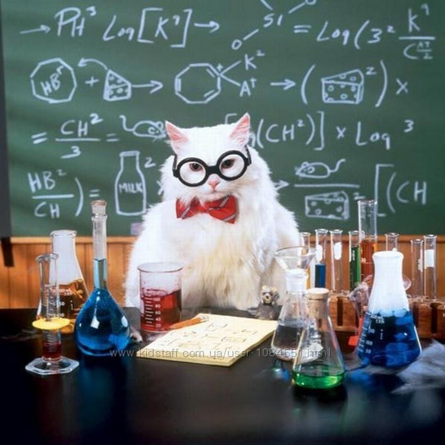 количество по науке картинки веселые они выполняют все