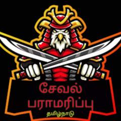 சேவல் பராமரிப்பு Cock fighter