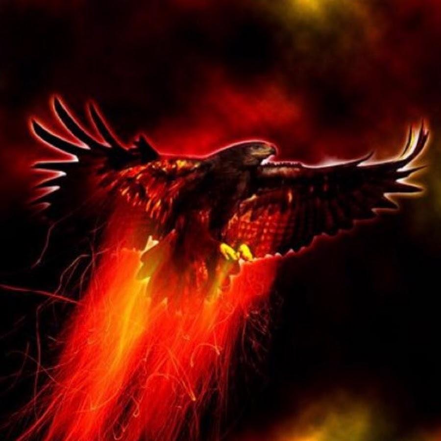 картинки ворона в огне галерею через основное