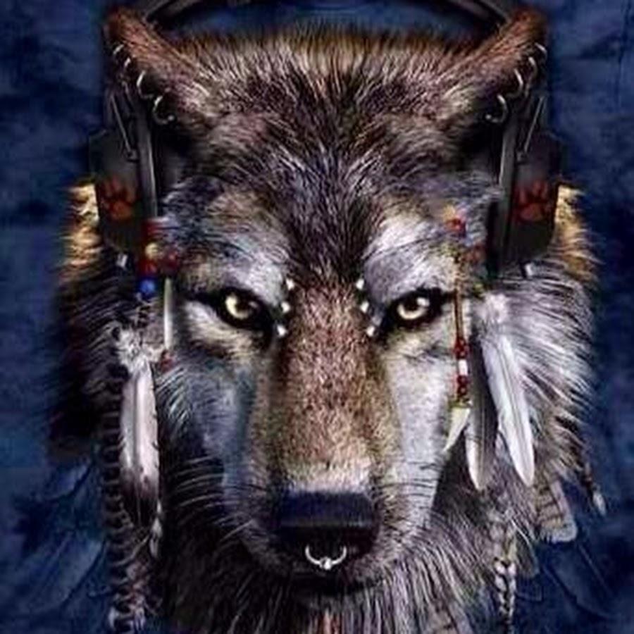 картинки шамана с волком девушки могут