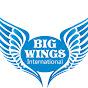 Big wings International