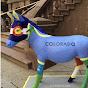 Colorado Donkey Watch
