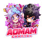 AomAmChannel