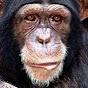 LukeThe Spook (lukethe-spook)